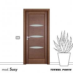 Susy-2